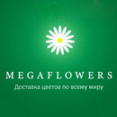 MegaFlowers coupons
