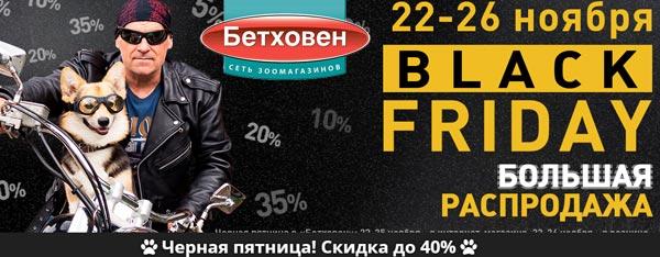 Черная Пятница Бетховен